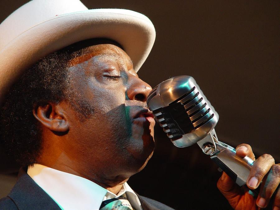 Der Auftritt von Eb Davis gilt bei Kennern der Berliner Blues-Sene als ein Highlight beim Blues Open-Air-Festival in Niederlehme (Foto: Eb u. Nina Davis)