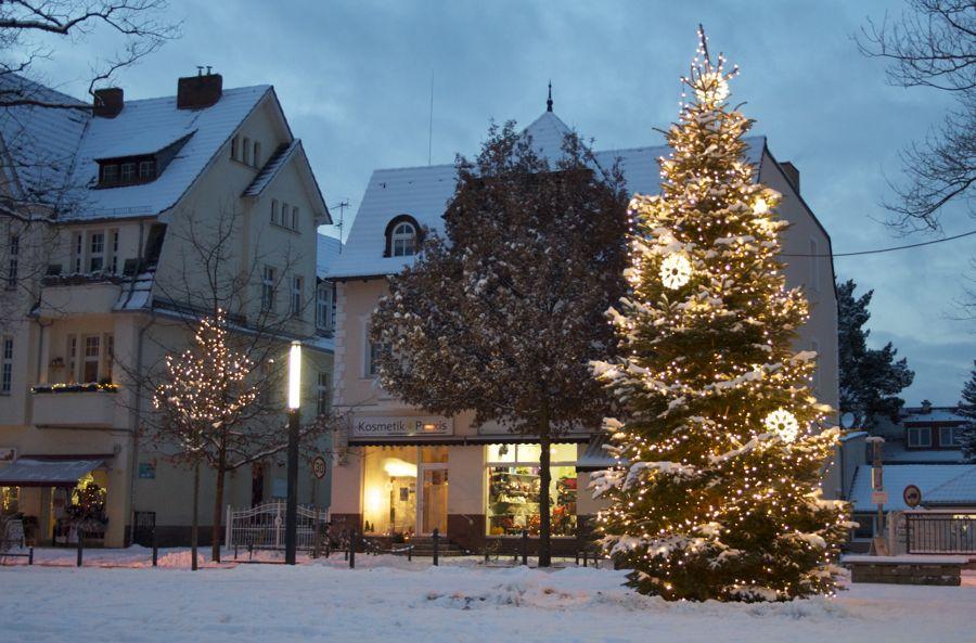 Auch in diesem Jahr schmückt ein prächtiger Weihnachtsbaum den Markt und Festplatz am Plumpengraben in Eichwalde. (Foto: Jörg Levermann)