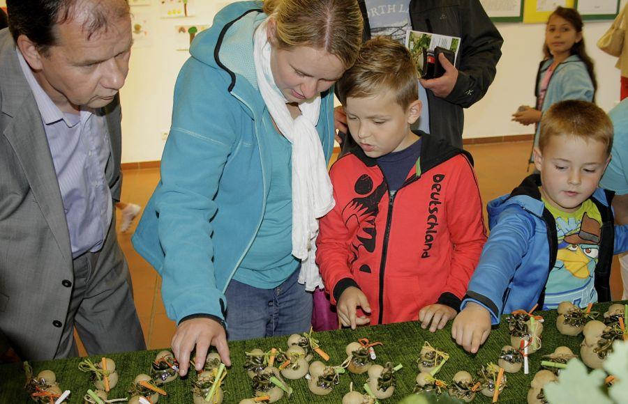 Bei Kindern und Erwachsenen kommen die Eichwaldis gut an. (Foto: Jörg Levermann)