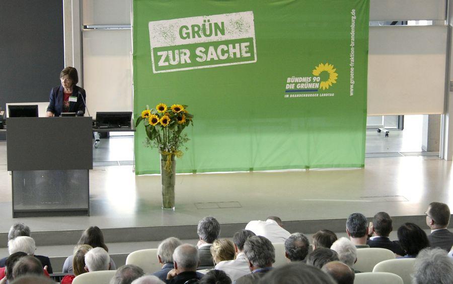 Die gesundheitspolitische Sprecherin von Bündnis 90 / Die Grünen im Landtag forderte auf der Flughafenkonferenz eine Abbau der Subventionen für den Flugverkehr und das Nachtflugverbot von 22 bis 6 Uhr. (Foto: Jörg Levermann)