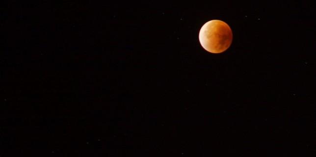 In den frühen Morgenstunden war auch in Eichwalde die Mondfinsternis gut zu beobachten. Im Kernschatten der Erde erschien der Mond in einer rötlichen Farbe. (Foto: Jörg Levermann)
