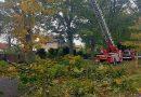 Zahlreiche Bäume stürzten durch den Sturm Xavier auf Straßen und Gebäude in Eichwalde. (Foto: Feuerwehr Eichwalde)