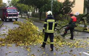 Im Herbst 2017 hatten die Feuerwehren die meisten wetterbedingten Einsätze, auch in Eichwalde. (Archiv-Foto: Jörg Levermann)